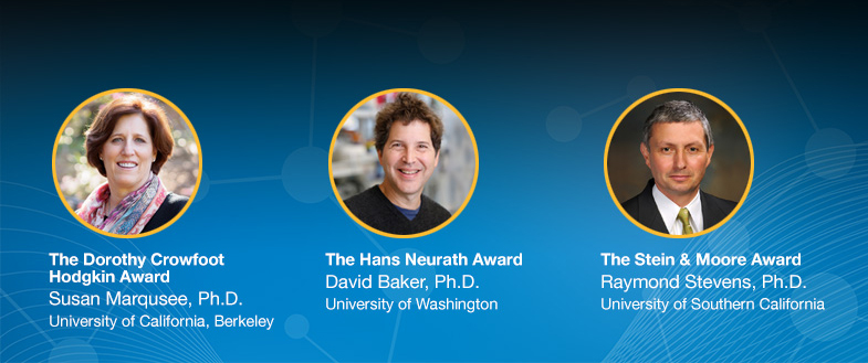 Protein Society Award Winners