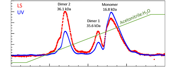 Biophysical Characterization by MALS