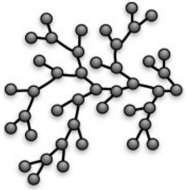 Branched Polymer