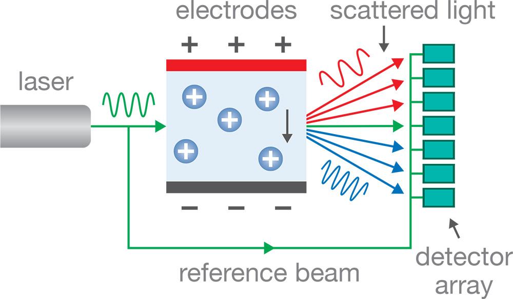ELS-Diagram-1000